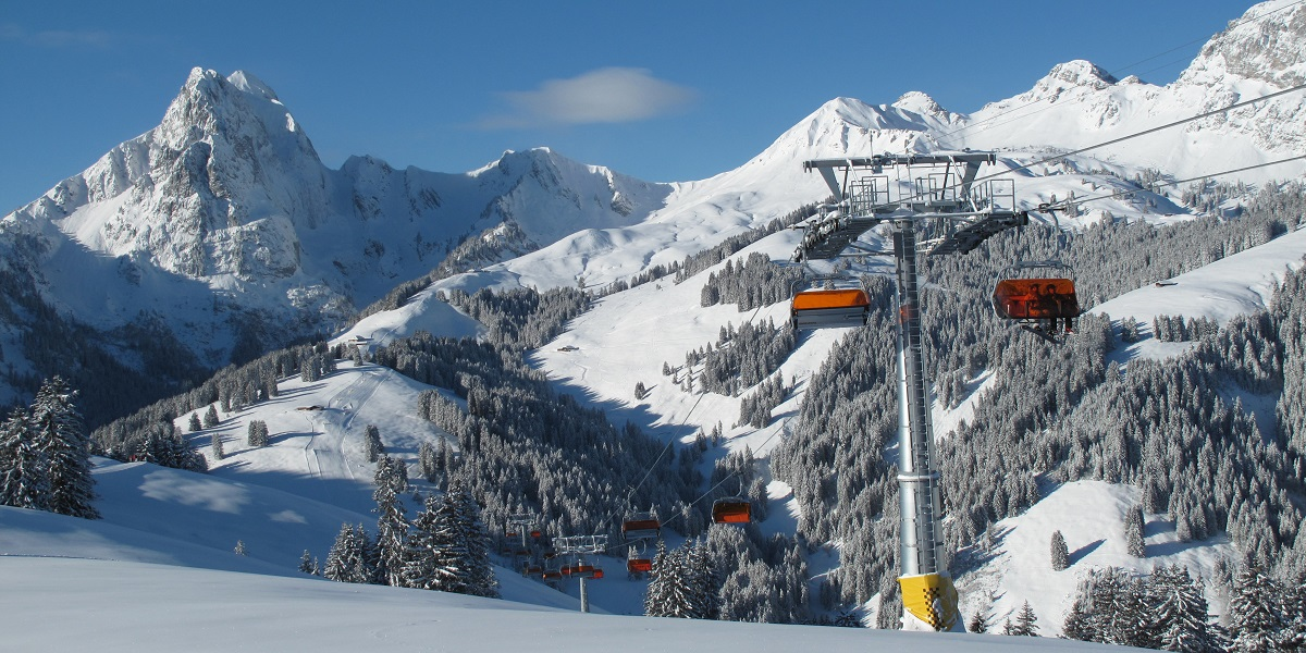 Transfer from Geneva Airport to Gstaad. Taxi with english-speaking driver.